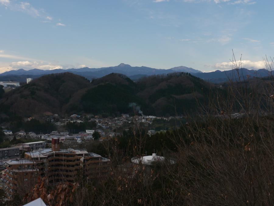 奥多摩の山.jpg