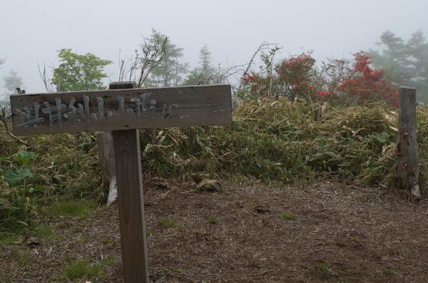奥甘利山IMGP3609.jpg