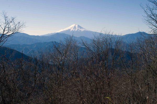 権現山山頂からの富士.jpg