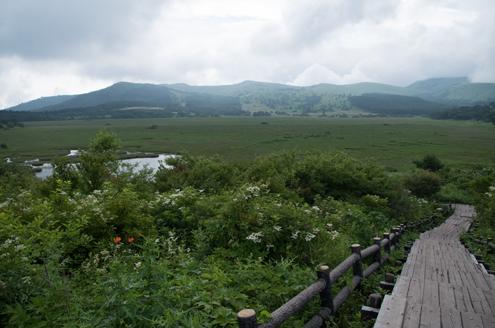 八島湿原.jpg